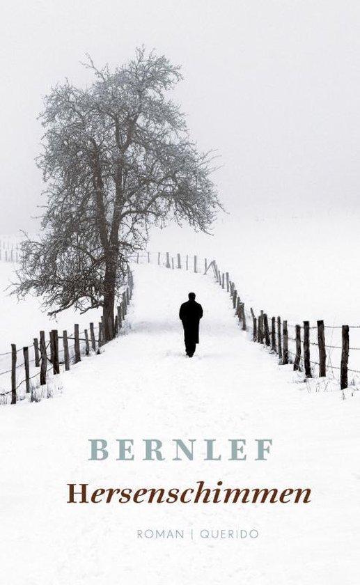 Hersenschimmen (Bernlef) boek