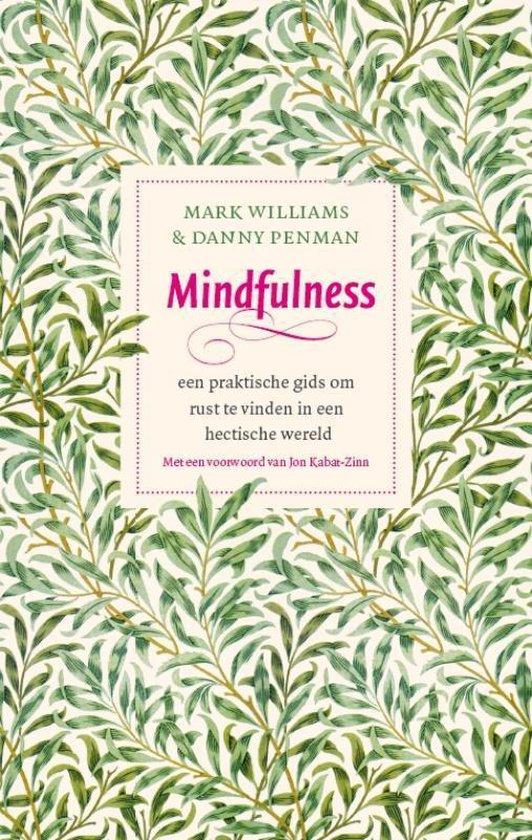 Mindfulness (Mark Williams & Danny Penman) boek