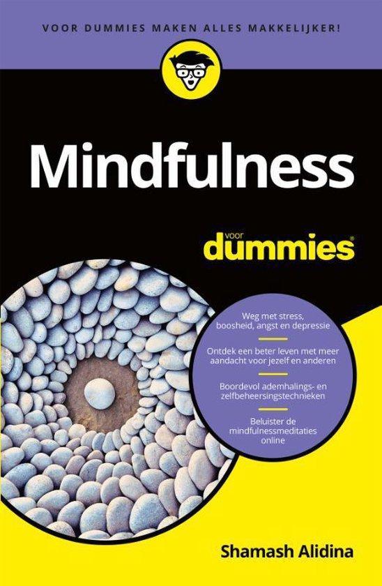Mindfulness voor dummies (Shamash Alidina) boek