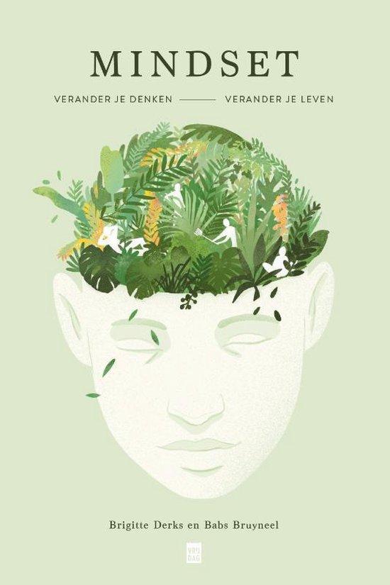 Mindset (Brigitte Derks & Babs Bruyneel) boek