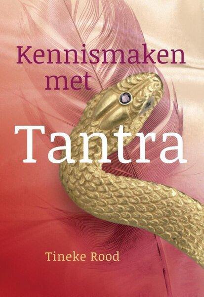 Kennismaken met Tantra (Tineke Rood) boek
