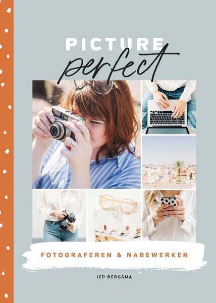 Picture perfect (Iep Bergsma) boek